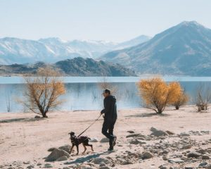 Lake-isabella-things-to-do-hiking-trails