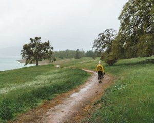 things-to-do-sonora-california-new-melones-lake-tuttletown-recreation-area