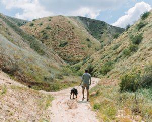 Hart-Park-trails-Bakersfield
