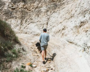hart-memorial-park-Bakersfield-hiking-trails