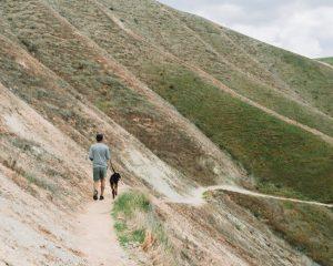 hart-park-trails