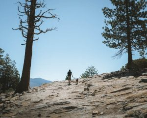 Dome-Rock-Sequoia-National-Forest
