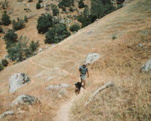 Kern-River-Trail-Central-California