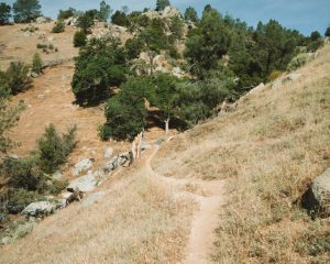 Kern-River-Trail-Hiking-Bakersfield-California