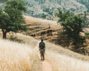 Kern-River-Trail-Sequoia-National-Forest
