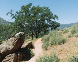 Mill-Creek-Hike-California