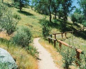 Mill-Creek-Kern-Canyon-Trail