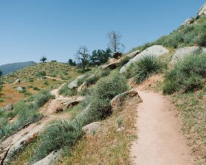 Mill-Creek-Trail-Bakersfield-Sequoia-National-Forest