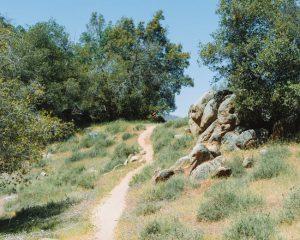 Mill-Creek-Trail-Central-California