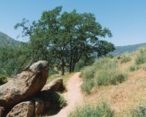 Mill-Creek-Trail-Hike-In-California