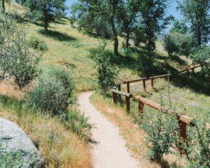 Mill-Creek-Trail-Kern-Canyon-Trail