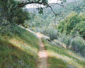 Mill-Creek-Trailhead-Bakersfield-Lake-Isabella