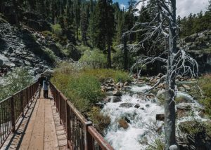 Eagle-Falls-Trail-Bridge