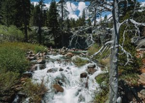 Eagle-Falls-Trail-Lake-Tahoe
