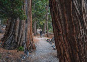 Rubicon-Trail-Emerald-Bay-State-Park-Lake-Tahoe