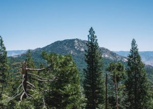 Unal-Hike-Sequoia-National-Forest