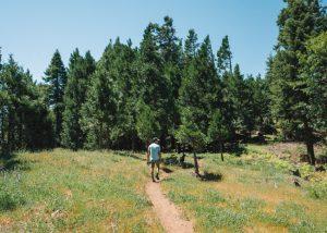 Unal-Trail-Wofford-Heights