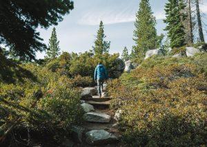 cascade-falls-hike