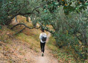 Black-Hill-Trail-California