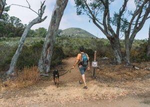 Black-Hill-Trailhead-Morro-Bay
