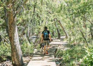 Convict-lake-hiking-trails