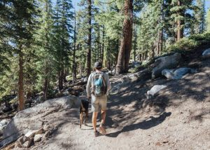 Crystal-Lake-Trail-Inyo-National-Forest-California