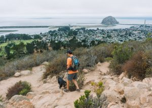 Morro-Bay-Black-Hill-Trail-Central-California-Coast