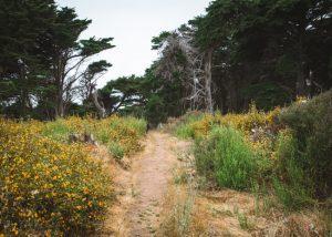 San-simeon-state-park-San-Simeon-Bay-Hike