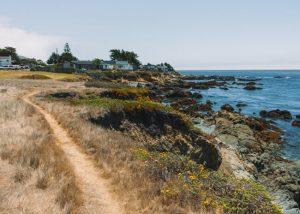 Bluff-Trail-Fiscalini-Ranch-Nature-Preserve