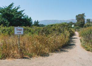 Carpinteria-Bluffs-Nature-Preserve-trail