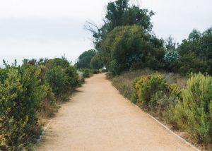 Carpinteria-Bluffs-Trail-Central-California