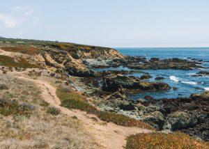 Fiscalini-Nature-Preserve-Trails-Cambria-California