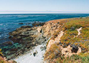 Fiscalini-Ranch-Preserve-Cambria-California