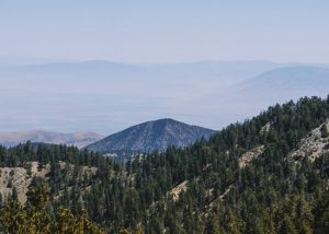 Mount-Pinos-Viewpoint-Los-Padres-National-Forest-California