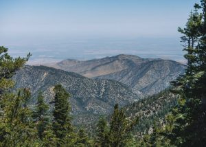 Mount-Pinos-hike-Los-Padres-National-Forest