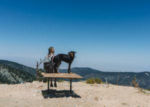 Mt-Pinos-Chumash-Wilderness
