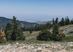 Mt-Pinos-Hike-SoCal-Los-Padres-National-Forest