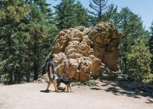 Mt-Pinos-Trail-Frasier