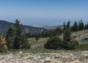 Mt-Pinos-Trail-Los-Padres-National-Forest-Southern-California