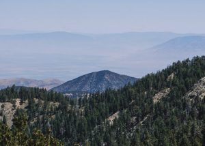 Mt-Pinos-Viewpoint-Los-Padres-National-Forest