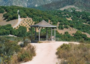 Toro-Canyon-Park-Trail-In-Santa-Barbara-California