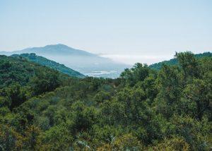 Toro-Canyon-Park-Trail-Ocean-Views