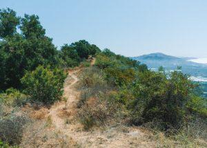 Toro-Canyon-Ridge-Trail