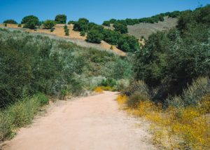 Toro-Canyyon-Park-Trails