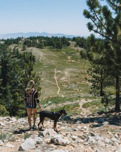 mt-pinos-hike-in-los-padres-national-forest