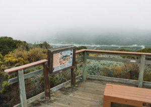 Sienas-View-Elfin-Forest-Los-Osos-California