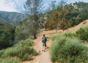 Hikes-In-Bakersfield-Kern-River-Trail