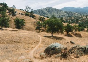 Hikes-Near-Bakersfield-Kern-River-Trail