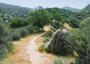 Hikes-Near-Bakersfield-Mill-Creek-Trail