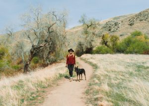 Hikes-Near-Bakersfield-Wind-Wolves-Preserve